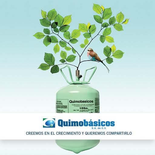 Quimobasicos Branding Case Study
